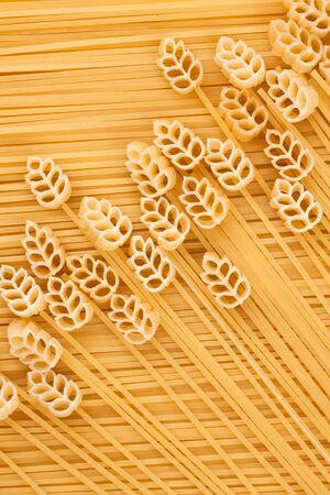 A field of wheat, pasta, conceptual image, the background