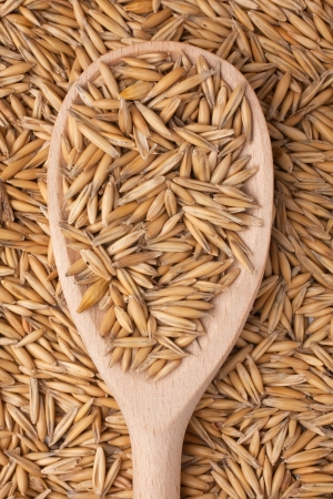 spoon with the oats on a background of oat Stock Photo - 16761564