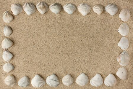 Frame made of sea shells on the sand,background photo