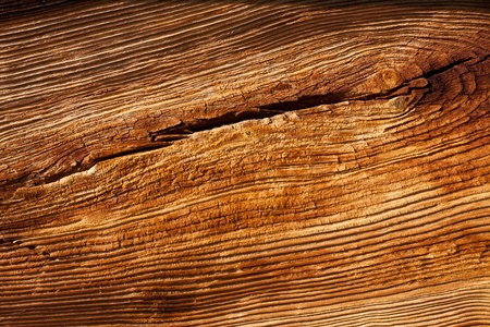 Wood work: Old wood texture