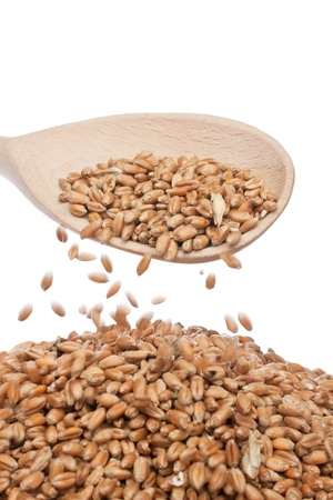 Wheat is poured from the wooden spoon Stock Photo - 17112760