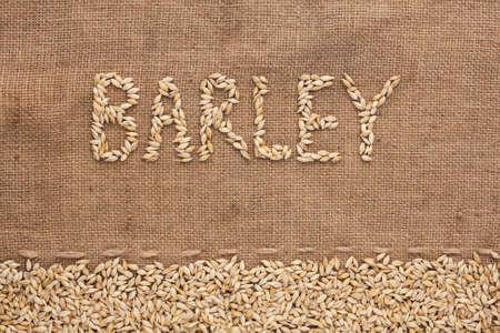 Word barley written on burlap , background  photo