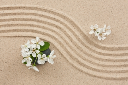 Flowers on the sand, can be used as background photo