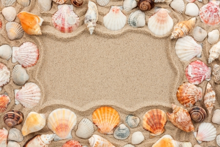 Frame of seashells on the sand  Stock Photo