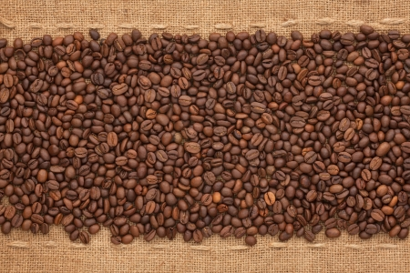 Coffee beans lying on sackcloth between the two lines photo