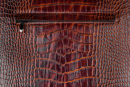 Zipper sewn into natural leather, can use as background Stock Photo - 26503989