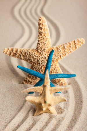 Four starfish in the sand on a background of wavy lines photo