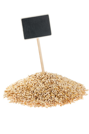 Heap of barley  with a pointer for your text,  isolated on white background Archivio Fotografico