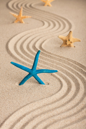 Starfish in the sand on a background of wavy lines photo