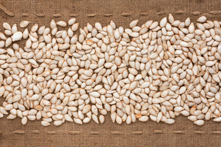 Pumpkin seed  lying on sackcloth between the lines, can be used as background photo