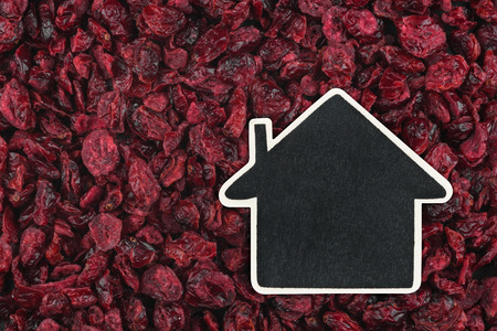 ruby house: House pointer, the price tag lies on  dried cranberry,  with space for your text Stock Photo