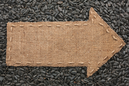 Pointer of  burlap lies on sunflower seeds, with place for your text photo