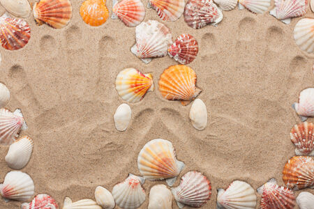indentation: Imprint hands on the sand among the shells, as background Stock Photo