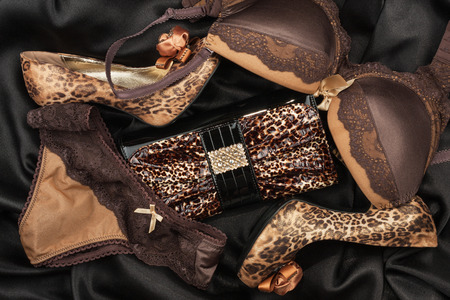 black satin: Sexy lingerie and leopard purse and leopard shoes, lying on black  satin