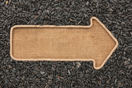 Pointer made from rope with  sunflower seeds  lying on sackcloth, with space for your text photo