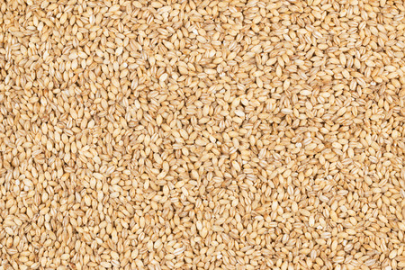 pearl barley: Pearl barley, as background, texture