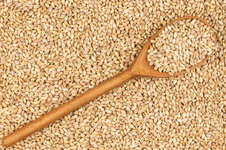 cebada: Cuchara de madera con cebada perlada, se encuentra en la cebada perla