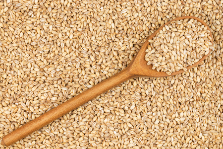 Wooden spoon with pearl barley, lies on pearl barley Stok Fotoğraf