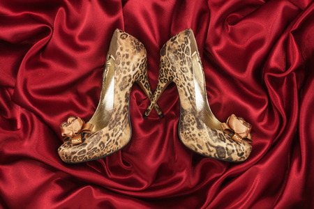 animal sexy: Leopard shoes lying on red silk, can use as background