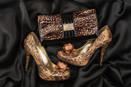Leopard purse and leopard shoes, lying on black  satin