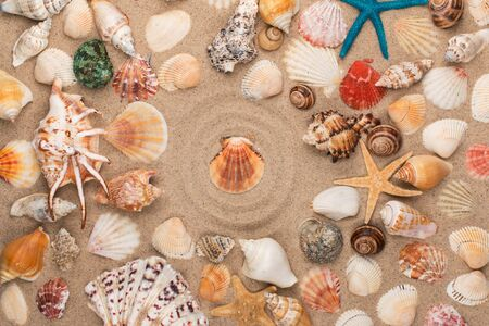 Seashell in the center of a circle made of sand, among seashells and stars. Top view Stock Photo
