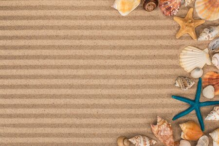 Frame made of starfish and shells lying on the striped sand. copy space. Top view.