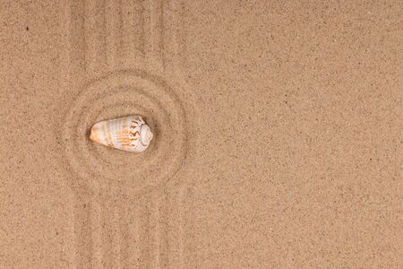 Circle made of sand with seashell. Copy space. Top view