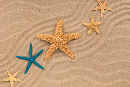 Starfish lying on zigzag lines of sand. Copy space. Top view