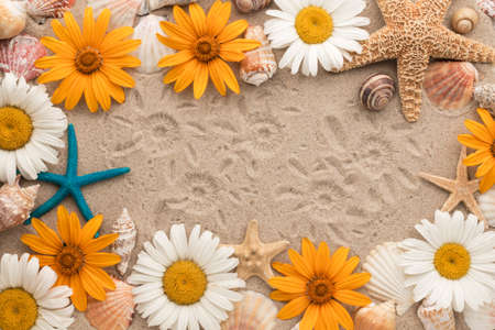 Beautiful frame made of daisies, seashells, starfish and chamomile imprints on the sand. View from above Banco de Imagens