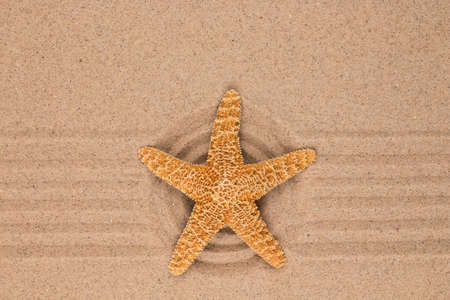 Large yellow star lies in the center of a sandy circle. Top view Banco de Imagens