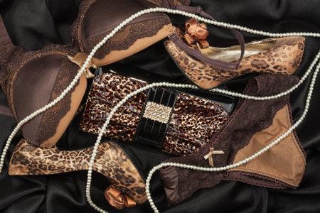 Handbag, underwear and leopard shoes. Luxury fashion background. Top view