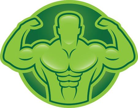 Modello bodybuilder illustrazione Vettoriali