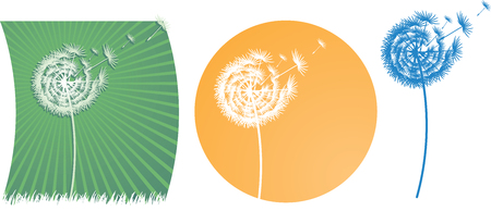 The vector dandelion on a wind