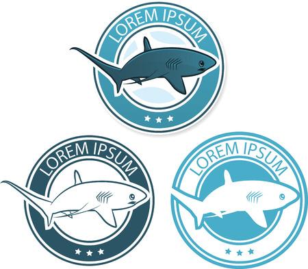 Vector shark logo illustration Vector