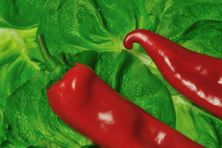 red peppers on green salad