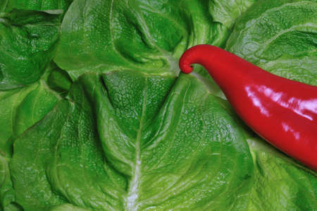 red pepper on green salad Stock Photo
