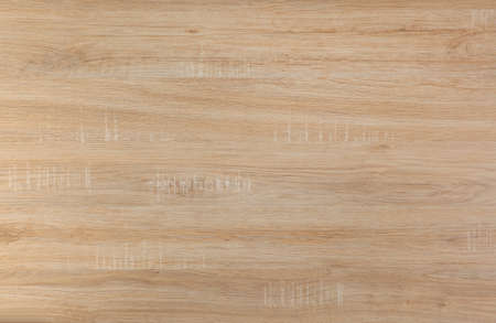 Birch wooden texture, pattern for furniture industry Standard-Bild