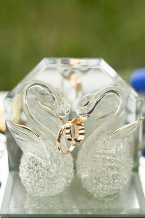 wedding rings together with decoration