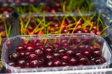 Fruit shop. Ripe cherry berry closeup 스톡 콘텐츠