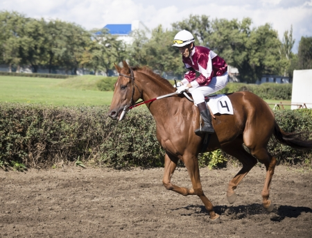 ROSTOV-ON-DON, RUSSIA-SEPTEMBER 22 - The rider rides a horse at full gallop in Rostov-on-Don on September 22, 2013 in Rostov-on-Don