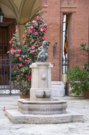 cochlea: Siena, Italy- April 01, 2014:Drinking fountain with a figure of a boy on the cochlea Editorial