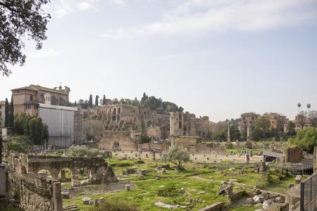 vie sociale: Rome, Italie-Avril 02,2014: Les touristes visitant le Forum romain. Ici il y avait la vie sociale de la ville.
