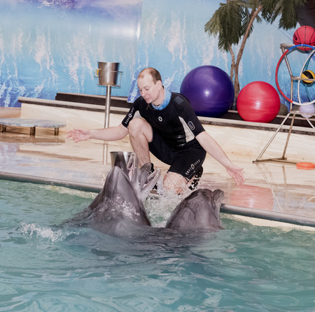 conducts: Rostov-on-Don, Russia- February 1, 2015: Trainer conducts singing dolphins in the Rostov dolphinarium. Visitors with children admired what he saw