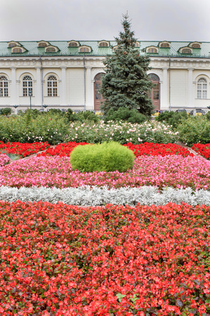 Moscow. Flower Garden on Manezh Square