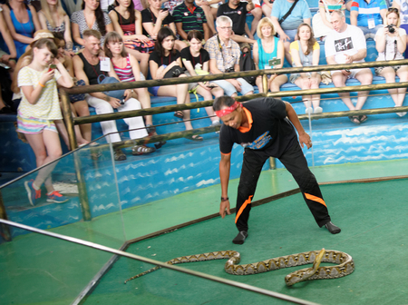 Pattaya,Thailand- November 20,2017: Show of snakes. Performer play with python during a show in Pattaya Snake Show