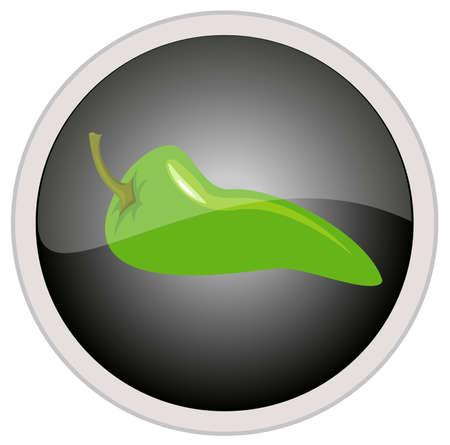 vector illustration of chili pepper icon