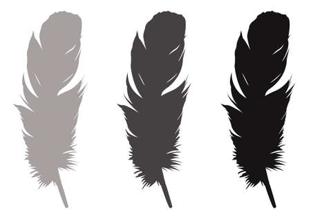 vector illustration of feather silhouette