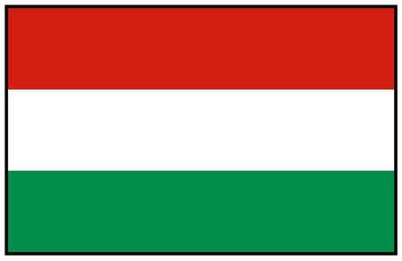 vector illustration of Hungary flag