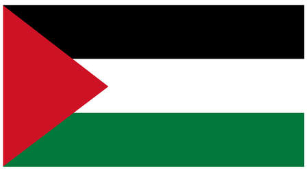 vector illustration of Palestine flag