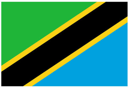 vector illustration of Tanzania flag